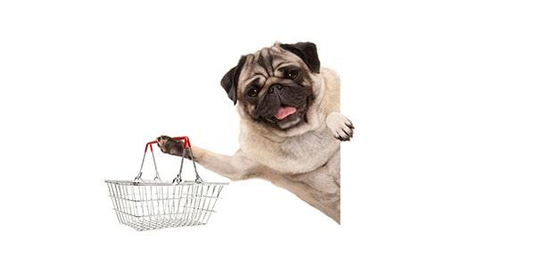 30% تخفیف کتابها و ویدیوهای تربیت و نگهداری سگ پت پرس
